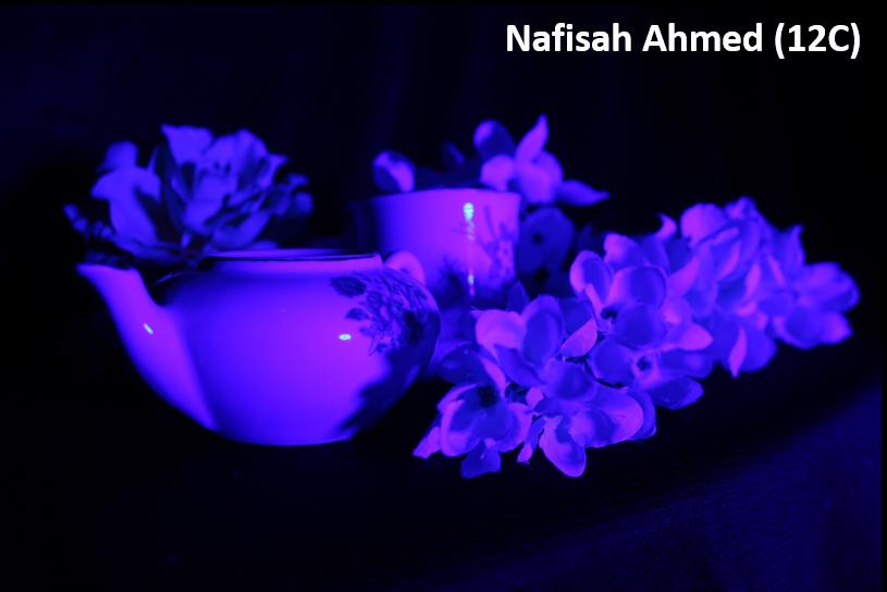 Nafisah Ahmed resize